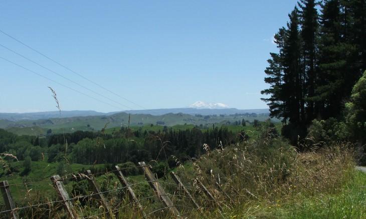 Farmland with Mt Ruapehu in distance, Manawatu-Wanganui, North Island
