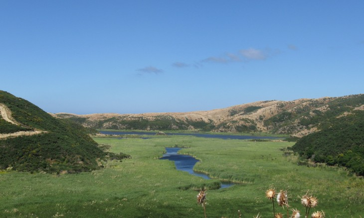 Lake Kohangatera, Wellington, North Island