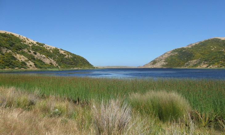 Lake Kohangapiripiri, Wellington, North Island