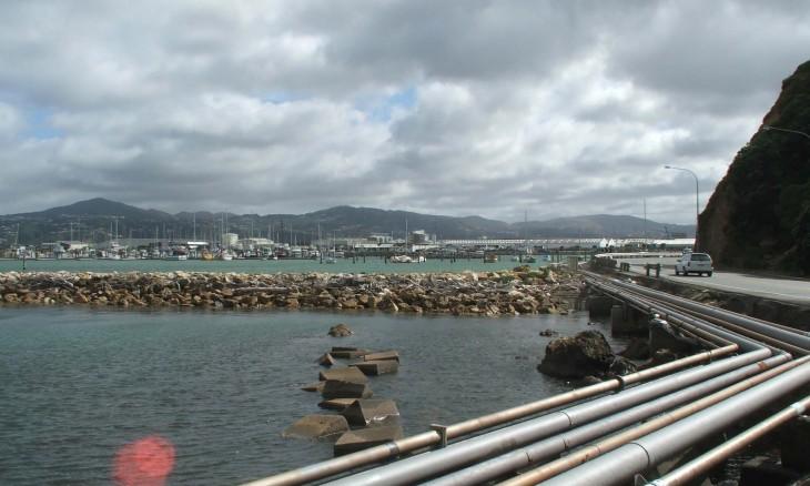 Point Howard, Wellington, North Island