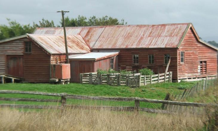 Farm near Martinborough, Wairarapa, North Island