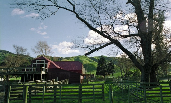 Farm near Porirua, Wellington, North Island