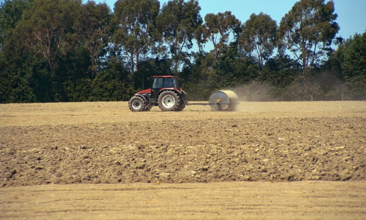 Farm near Oamaru, Otago, South Island
