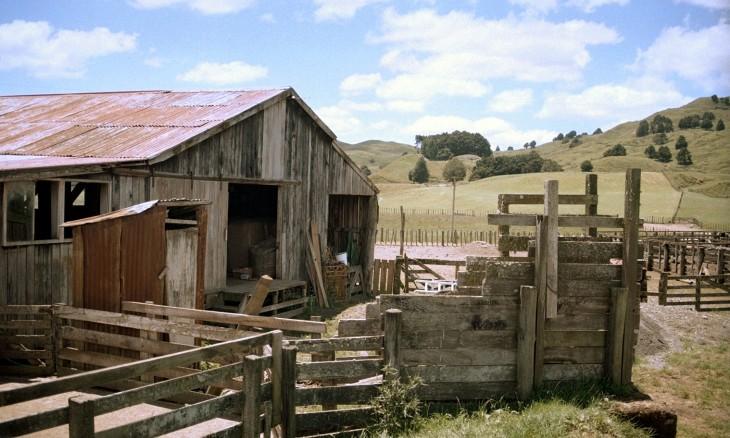 Farm near Taumaranui, Manawatu-Wanganui, North Island