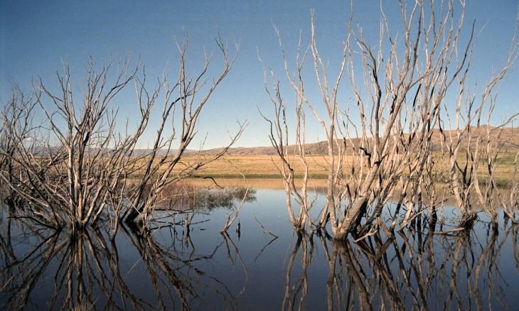Lake near Alexandra, Otago, South Island