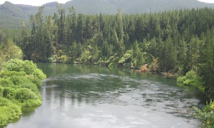 River near Rotorua, Bay of Plenty, North Island