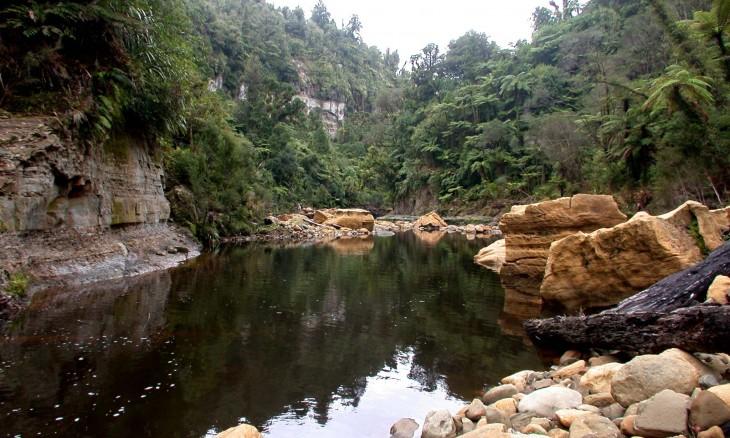 River near Urenui, Taranaki, North Island
