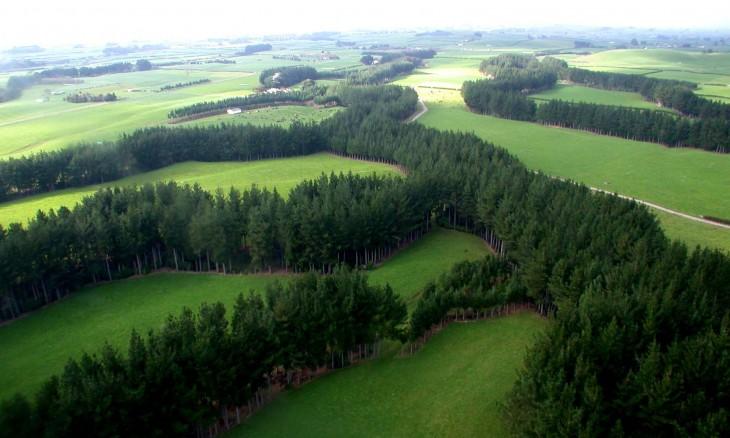 Farmland near Eltham, Taranaki, North Island