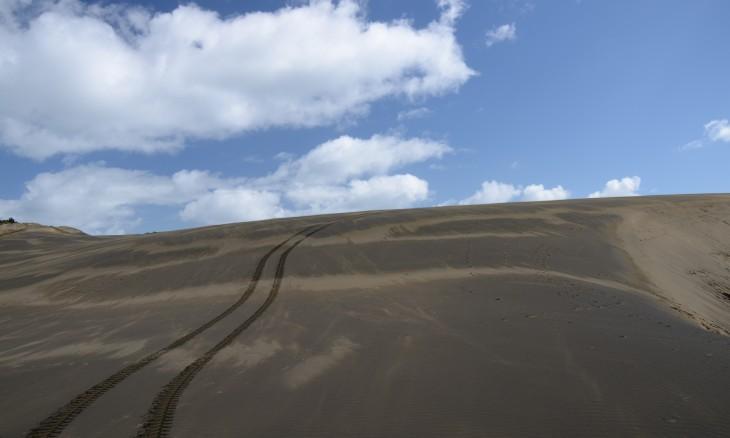 Giant sand dune, Bethells Beach, Auckland, North Island