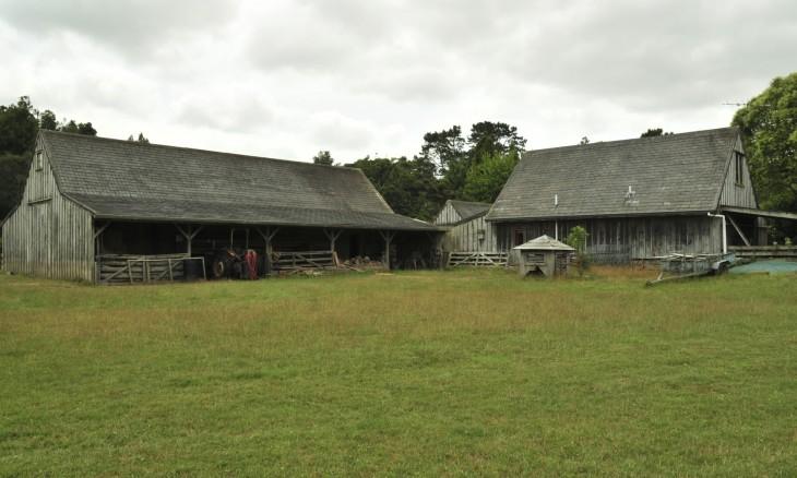 Farm near Brookby, Auckland, North Island