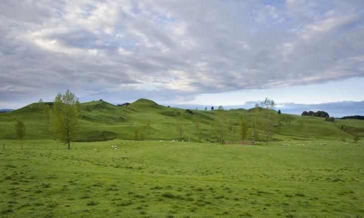 Farmland near Te Kuiti, Waikato, North Island