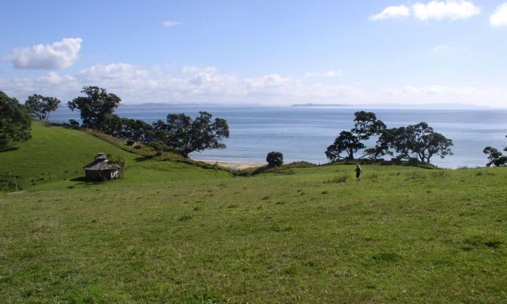Whangaparoa Peninsula, Auckland, North Island