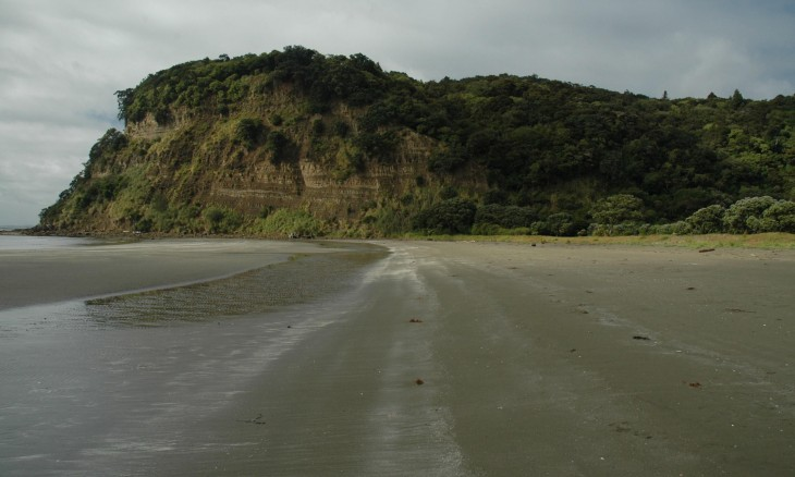 Wenderholm Regional Park, Auckland, North Island