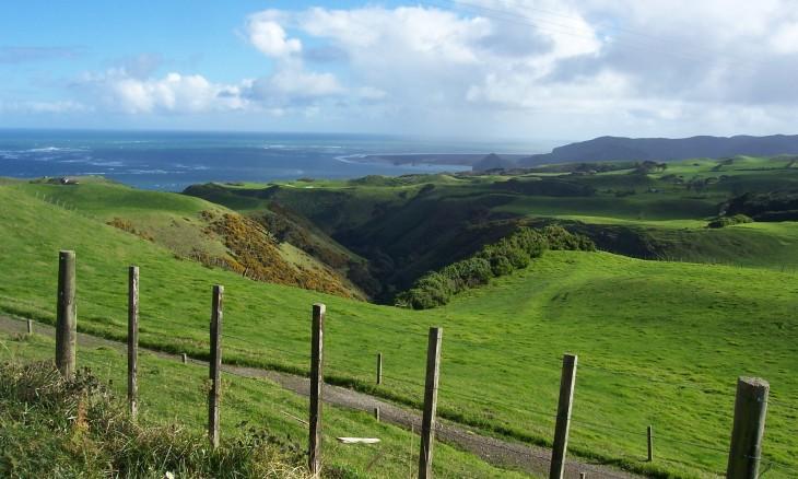 Awhitu Peninsula, Auckland, North Island
