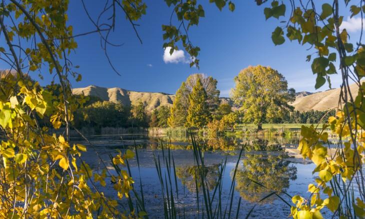 Taylor Dam, Marlborough