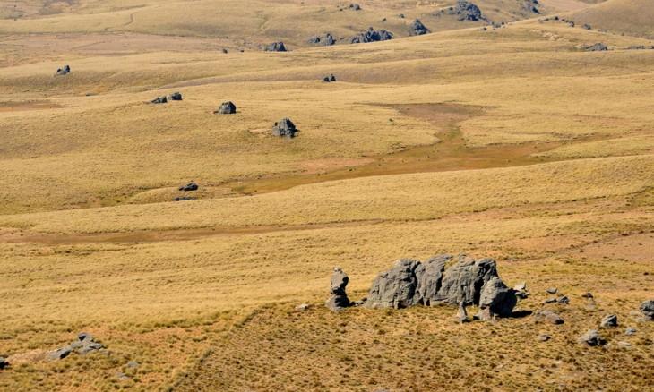 Rock and Pillar Range, Otago