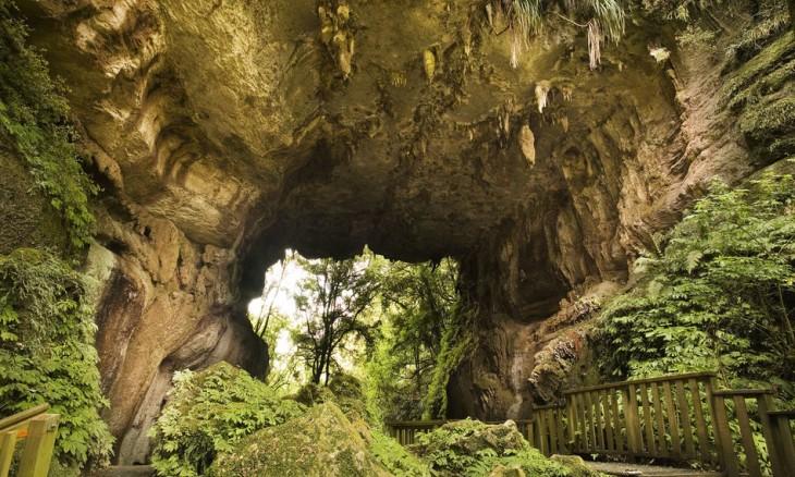 Mangapohue Limestone Arch