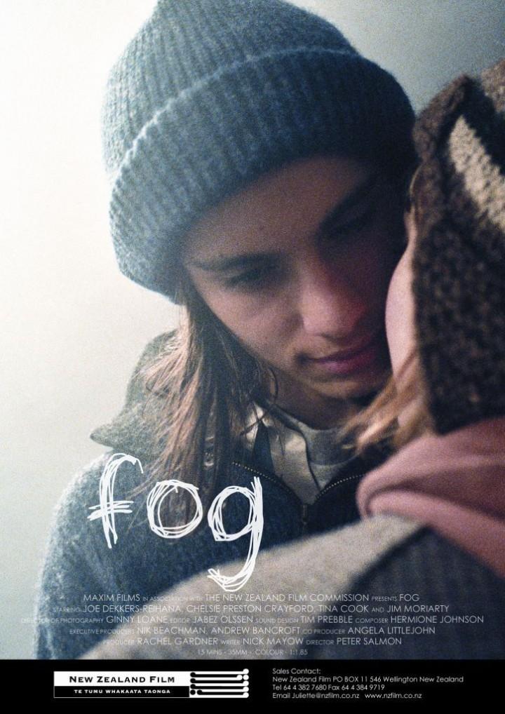 Fog flyer