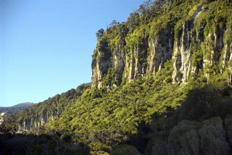 Near Porarari River, West Coast, South Island
