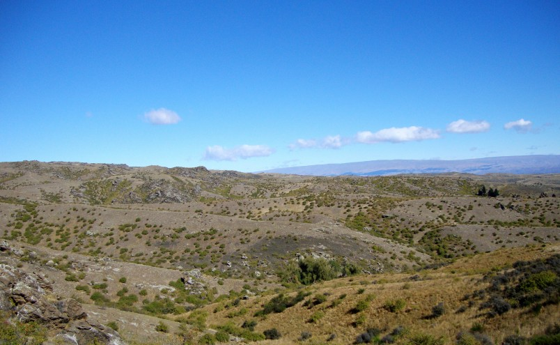 Ida Valley, Otago, South Island