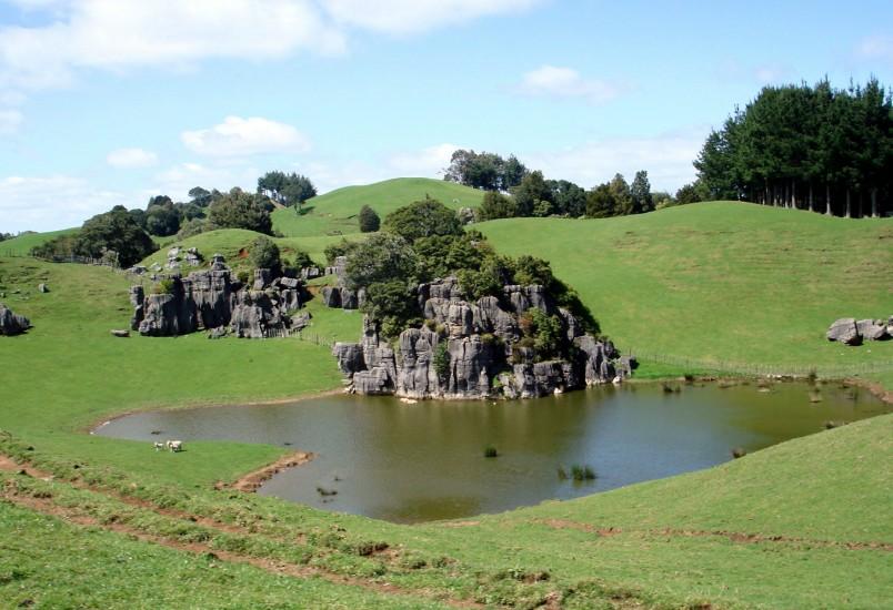 Farmland near Mangaotaki, Waikato, North Island