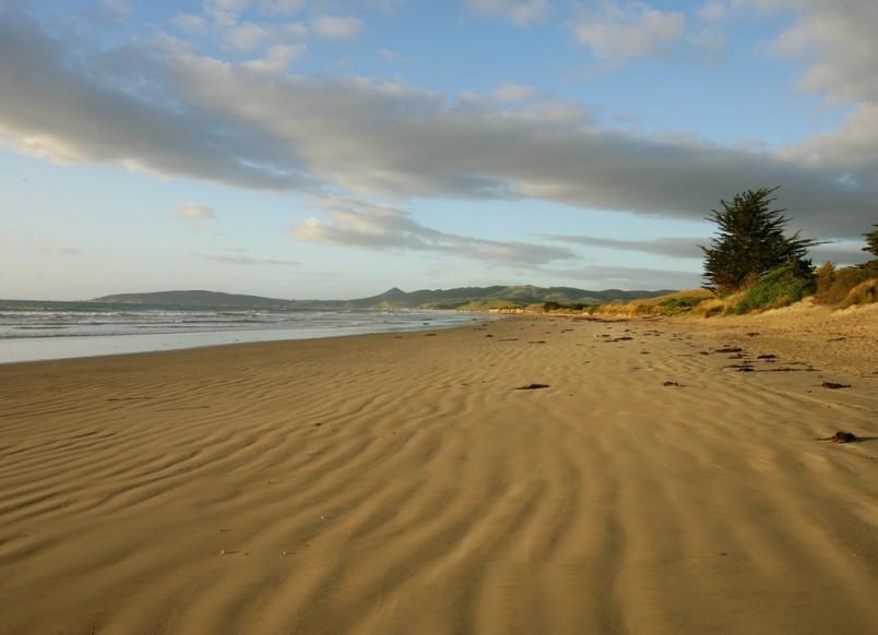 Shag Point Beach, Otago