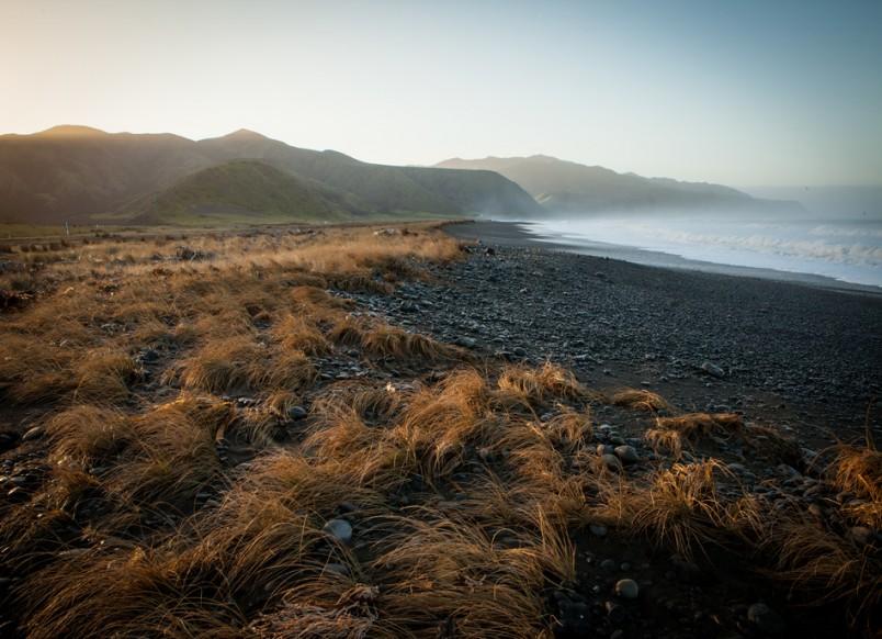 Palliser Coastline, Wellington