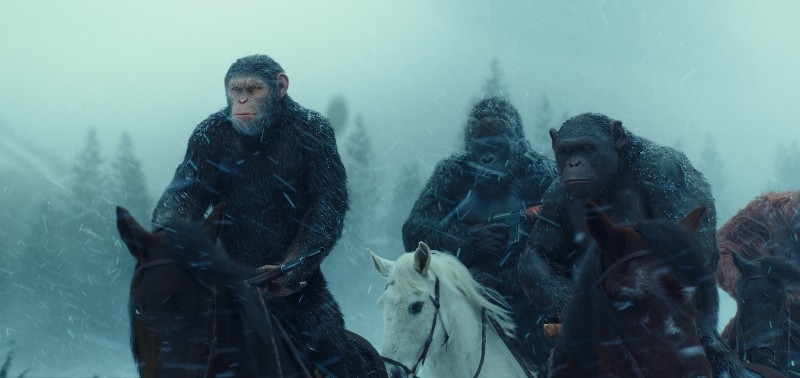 Apes on horseback in the snow