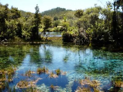Pupu Springs, Takaka, South Island